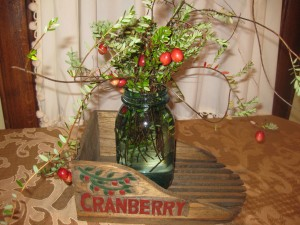 Cranberry vines supplied by Wetherby Cranberry Company for table and room decorations.