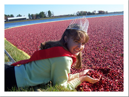 Cranberries are a major draw of the area.